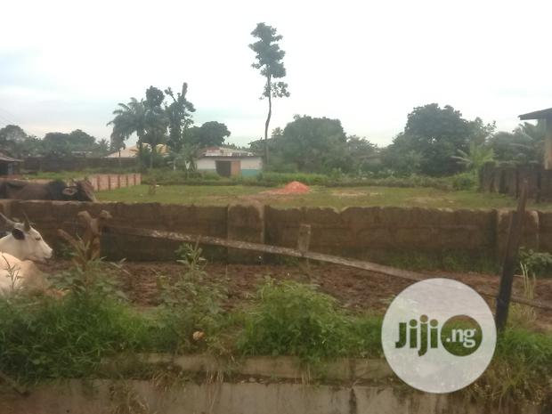 50 × 100 at Sapele Road Opposite Winners For Sale